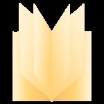 12 Seiten Icon